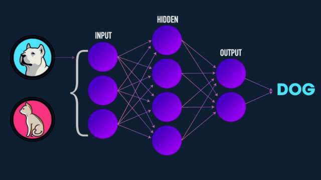 Beginner's intro into Neural Networks and Machine Learning